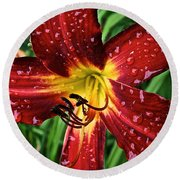 Spiderman The Day Lily Round Beach Towel