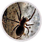Spiders Home Round Beach Towel