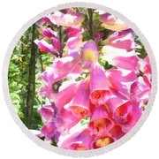 Spikes Of Pink Foxgloves Round Beach Towel