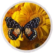 Spotted Butterfly On Yellow Mums Round Beach Towel