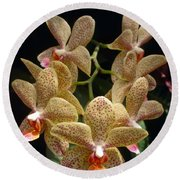 Spotted Orchids Round Beach Towel