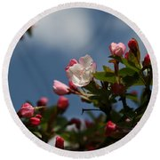 Spring Blossoms  Round Beach Towel