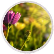 Spring Flower Round Beach Towel by Carlos Caetano