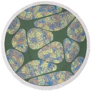 Spring Lips Round Beach Towel
