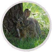 Spring Rabbit Round Beach Towel