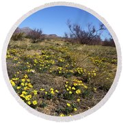 Spring Surprise Franklin Mountains Round Beach Towel