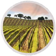 Spring Vineyard Round Beach Towel