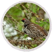 Spruce Grouse Round Beach Towel