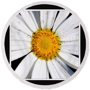 Square Daisy - Close Up 2 Round Beach Towel