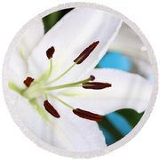 Square Lily On Blue Round Beach Towel