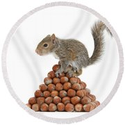 Squirrel And Nut Pyramid Round Beach Towel by Mark Taylor