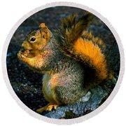 Squirrel At Riverfront Park Round Beach Towel