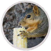 Squirrel Holding Corn Round Beach Towel