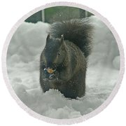 Squirrel In The Snow Round Beach Towel