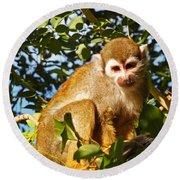 Squirrel Monkey Round Beach Towel