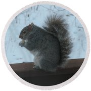 Squirrel Snack Round Beach Towel