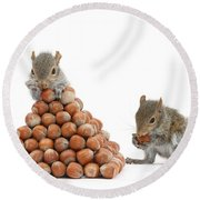 Squirrels And Nut Pyramid Round Beach Towel