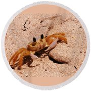St. Lucia Crab On Beach Round Beach Towel