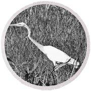 Stalking Egret Round Beach Towel