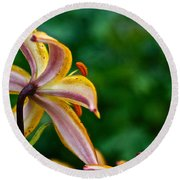 Star Lily Round Beach Towel