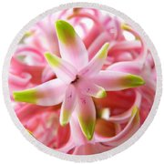 Star Of The Show Hyacinth  Round Beach Towel