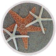 Starfish Three Round Beach Towel by Sandi OReilly