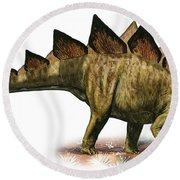 Stegosaurus Armatus, A Prehistoric Era Round Beach Towel