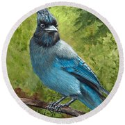 Stellar Jay Round Beach Towel by Dee Carpenter