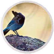 Stellers Rock Round Beach Towel