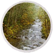 Still Creek Round Beach Towel
