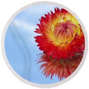 Strawflower Reflection Round Beach Towel