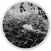 Streched Trees In Black And White Round Beach Towel