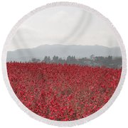 Study In Red And Grey Round Beach Towel