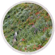 Subalpine Wildflowers Round Beach Towel