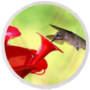 Summer Fun Hummingbird Round Beach Towel