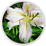Summer White Madonna Lily Round Beach Towel