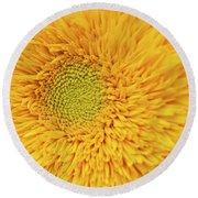 Sunflower 2881 Round Beach Towel