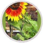 Sunflower 3 Sf3wc Round Beach Towel