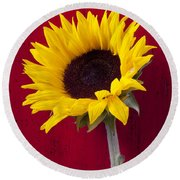 Sunflower Against Red Wooden Wall Round Beach Towel by Garry Gay