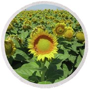 Sunflower And Honeybees July Two K O Nine  II Round Beach Towel