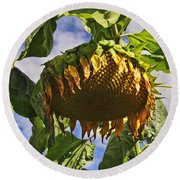 Sunflower At Fall Round Beach Towel