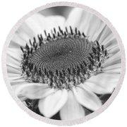 Sunflower Bloom Black And White Round Beach Towel