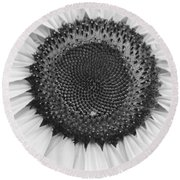 Sunflower Center Black And White Round Beach Towel