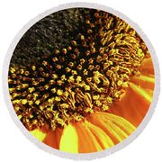 Sunflower Edge Round Beach Towel