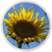 Sunflower For Snack Round Beach Towel
