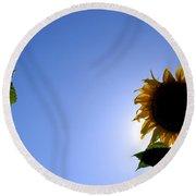 Sunflower In The Sun Round Beach Towel
