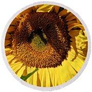 Sunflower Up Close Round Beach Towel