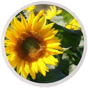 Sunflower Visitor Round Beach Towel