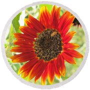 Sunflower With Bee Round Beach Towel
