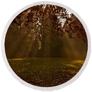 Sunlight And Leaves Round Beach Towel